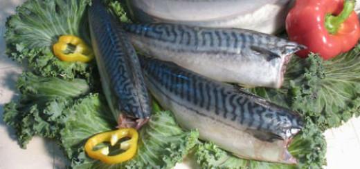 К какому соннику не обратиться, любой скажет, что рыба во сне — это почти всегда знак прибыли.
